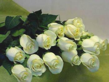 Скачать александр дюмин белые розы mp3 в качестве 320 кбит.