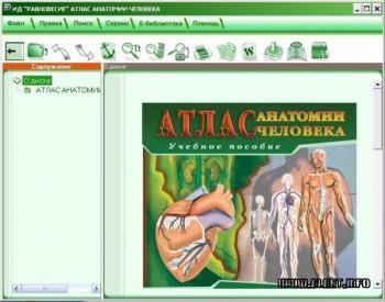 Анатомия человека сапин 1 том мышцы