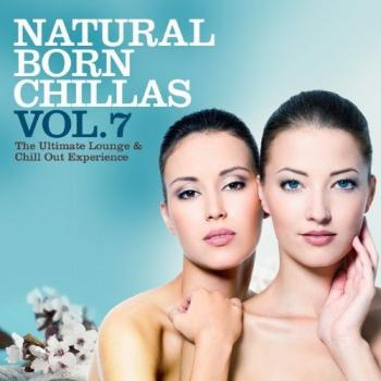 VA - Natural Born Chillas Vol.7: The Ultimate Lounge and Chill Out Experience