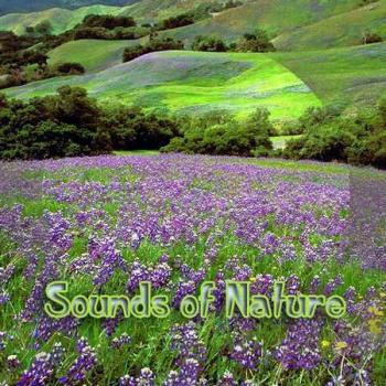 Sounds of Nature (2002)