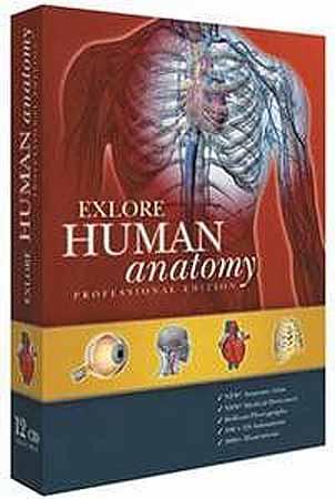 Электронный атлас по анатомии человека скачать