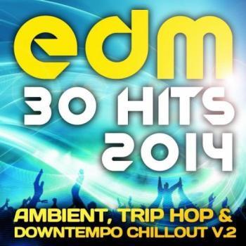 top 10 edm hits 2014