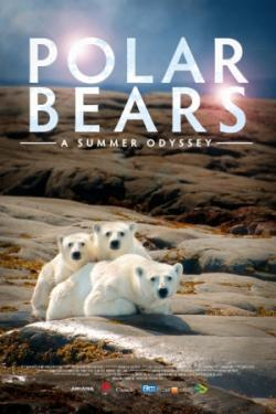 смотреть про белых медведей