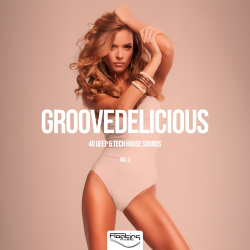 VA - Groovedelicious, Vol. 3 (40 Deep and Tech House Sounds)