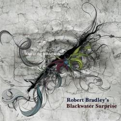 Robert Bradley's Blackwater Surprise - Out of the Wilderness