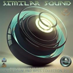 VA - Similar Sound: Winter Drum And Bass