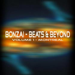 VA-Bonzai: Beats & Beyond Volume 1