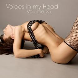 VA - Voices in my Head Volume 25