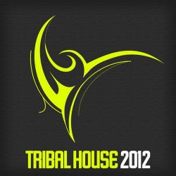Va discovering tribal house compilation volume 2 for Tribal house tracks