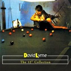 David Lyme - The 12'' Collection