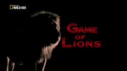 Игры львов / National Geographic. Game of Lions DUB