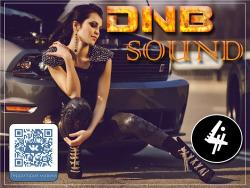 VA - DNB Sound vol.4