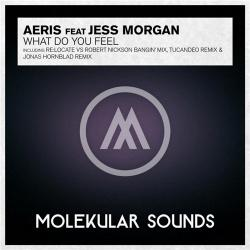 Aeris feat. Jess Morgan - What Do You Feel