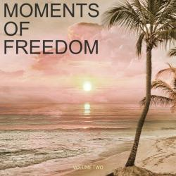 VA - Moments Of Freedom Vol.2: Selection Of Finest Chill Out and Ambient Music