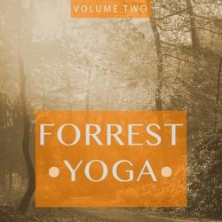 VA - Forrest Yoga Vol.2: Finest In Smooth Electronic Music