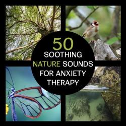 VA - 50 Soothing Nature Sounds for Anxiety Therapy: Peaceful Music to Calm Your Mind