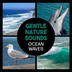 VA - Gentle Nature Sounds: Ocean Waves Calming Music for Relaxation Healing Waters