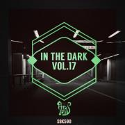 VA - In the Dark, Vol. 17