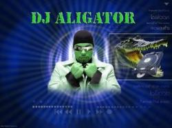 DJ Aligator-The Best (2001-2007) Mp3 - 320kbps (2007)