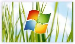 Обои и темы для Windows XP (2005)