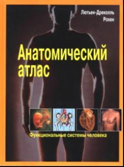 атлас анатомии человека синельников смотреть онлайн