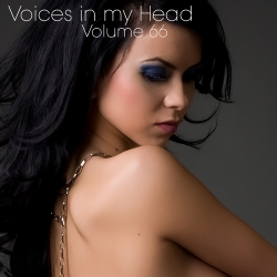 VA - Voices in my Head Volume 66