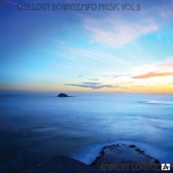 VA - Chillout Downtempo Music, Vol. 5