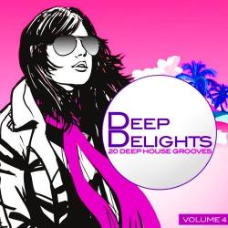 VA - Deep Delights 20 Deep House Grooves Vol 4