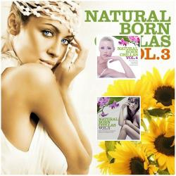 VA - Natural Born Chillas, Vol. 3-5