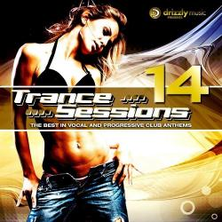 VA - Drizzly Trance Sessions Vol 14