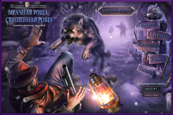 Mystery Case Files 11: Dire Grove, Sacred Grove Collectors Edition [RUS]