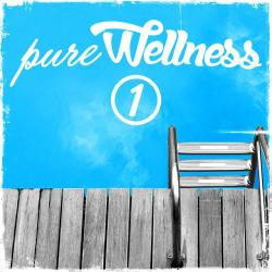 VA - Pure Wellness 1