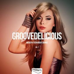 VA - Groovedelicious, Vol. 2 (40 Deep Tech House Sounds)