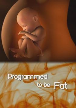 Природа вещей: Курс на ожирение? / The Nature of Things: Programmed to Be Fat? DVO