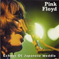 Pink Floyd - Echoes Of Japanese Meddle