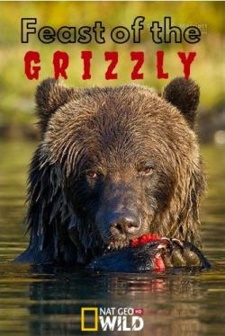 Пир гризли / NAT GEO WILD. Feast of the Grizzly DUB